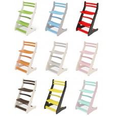 Детский универсальный стул Вырастайка 2D